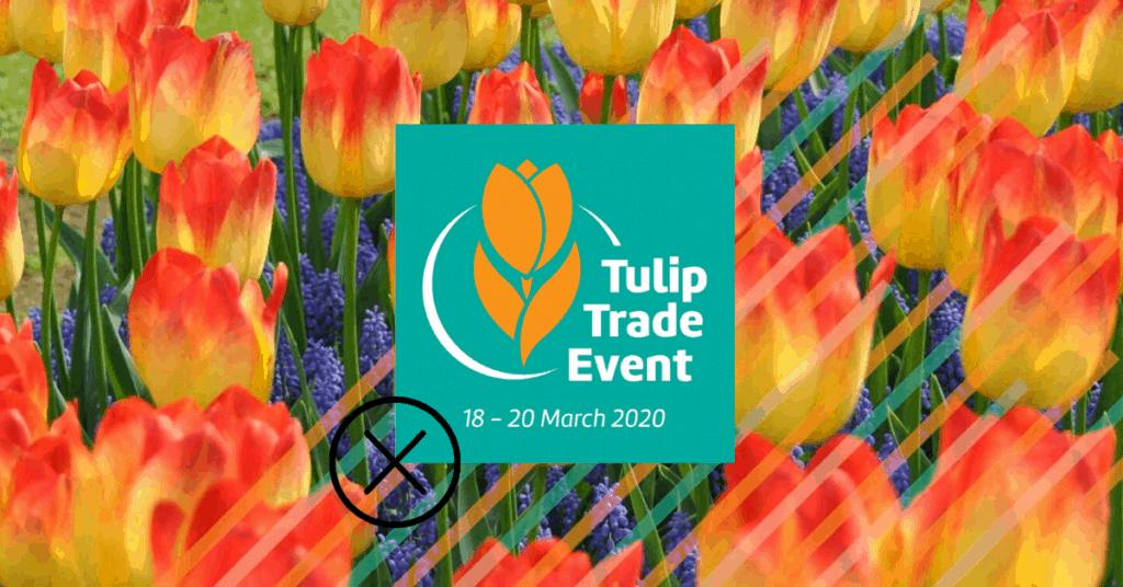Tulip Trade Event 2020 letos bez návštěvníků.